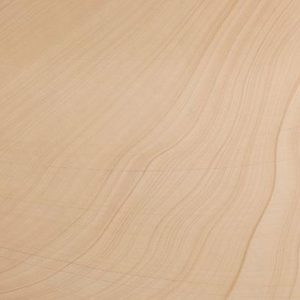 Simpson Sandstone Honed Finish Flooring Stone Sample